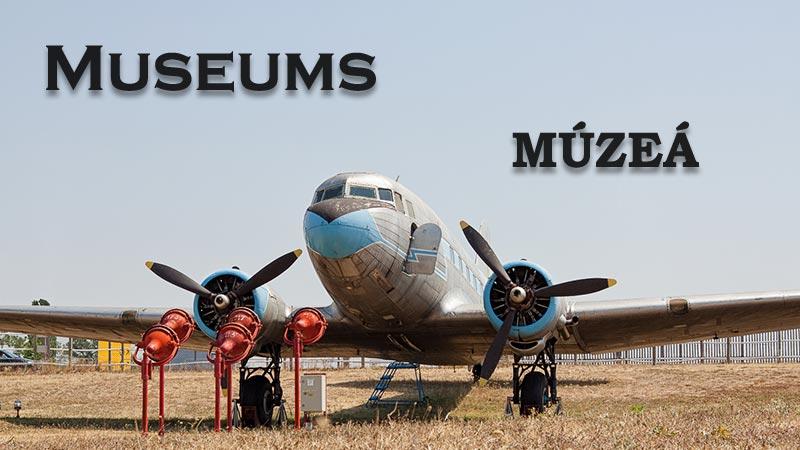 Muzea banner